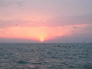 sunrisePOC.jpg