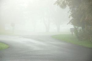 Another foggy day.jpg