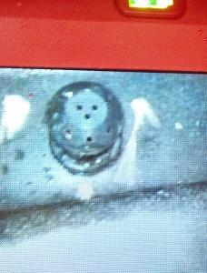 tank sprayer.jpg