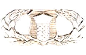 ATC Badge.jpg