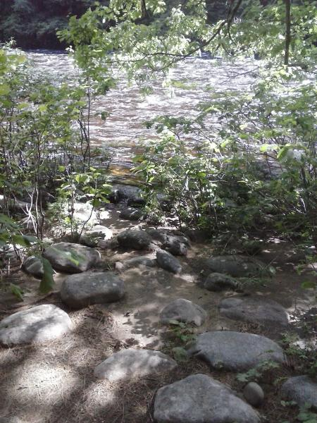 Sacandaga River from site 132