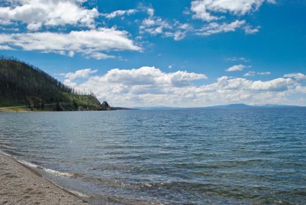 Yellowstone 2015 (53 of 251)