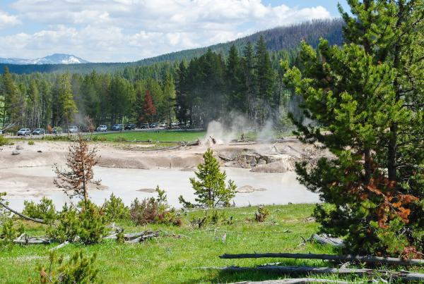 Yellowstone 2015 (70 of 251)