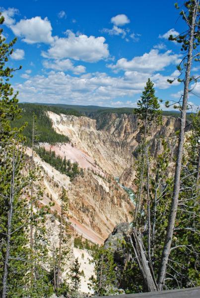 Yellowstone 2015 (77 of 251)