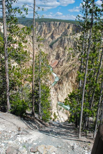 Yellowstone 2015 (79 of 251)