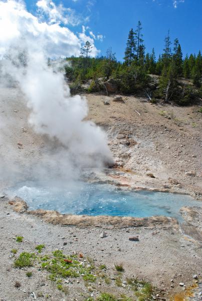 Yellowstone 2015 (91 of 251)