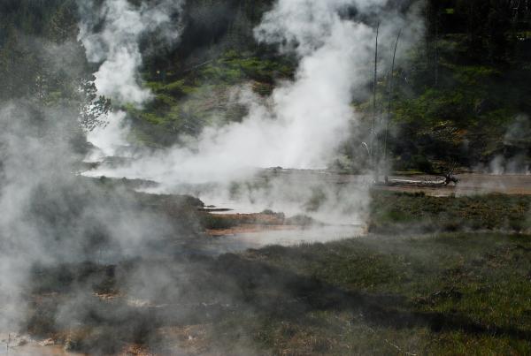 Yellowstone 2015 (122 of 251)