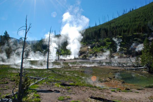 Yellowstone 2015 (133 of 251)
