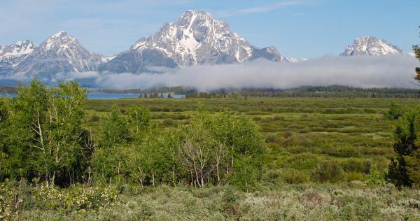 Yellowstone 2015 (240 of 251)