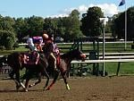 My pick in the 6th race, ( still running)