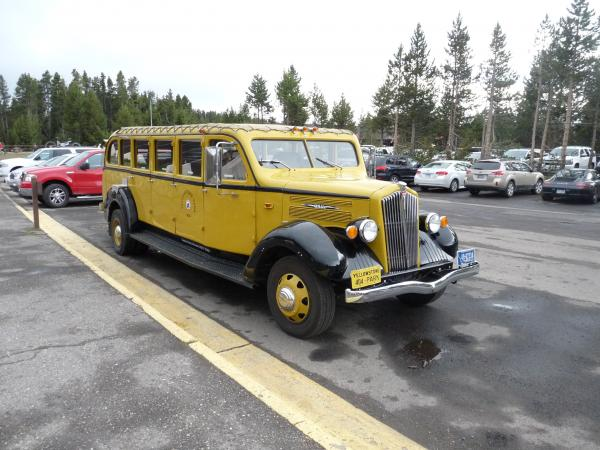 The open top antique Yellow buses are a fantastic way, especially if you are normally the driver, to be able to take in Yellowstone Park.  Old restored bodies on modern chassis, drive train & suspension.  In Glacier National Park we have the old White Buses in Red.