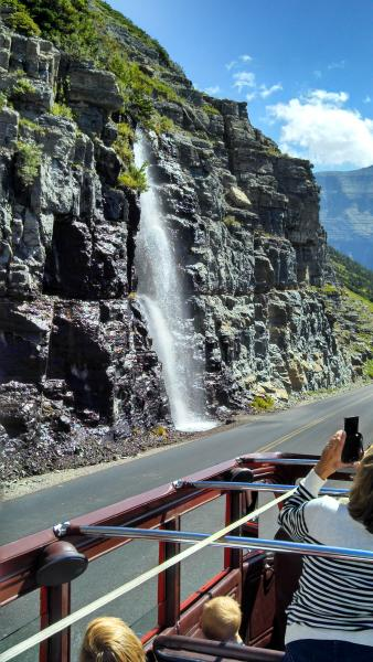 Here is a falls on the North side of Going to the Sun Road.  They've built drainage under a number of spots along the road to direct the falling water under the road and to the lakes below.   We took a RED BUS Jammer tour that day.  The canvas tops roll back and it is the best way to view the sights!  Our driver made multiple stops along the way for photos.