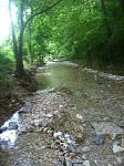 roaring river is gorgeous area. This is a side creek at the sites.
