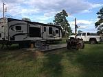 Swamp Eagle at deer camp   Jefferson Texas 9-14