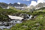 American Basin, along American Loop, Lake City Colorado