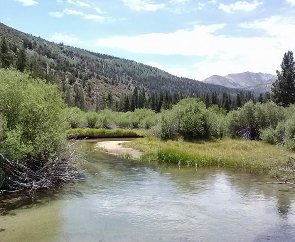 Rock Creek 2014