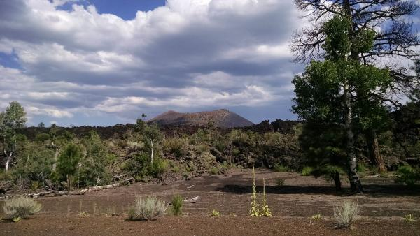 In the distance, that's Sunset Crater.