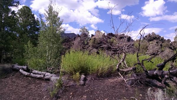 This is looking east, across the lava fields a bit north of Sunset Crater (the youngest volcano in the U.S.).