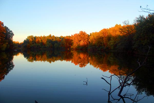 Fall Mirror Image - Lake Evergreen, Hudson, IL