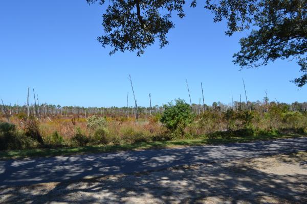 Sights along a bike trail
