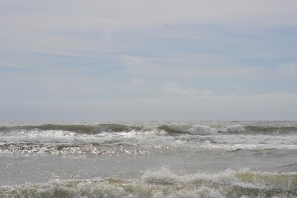 Waves were big all week