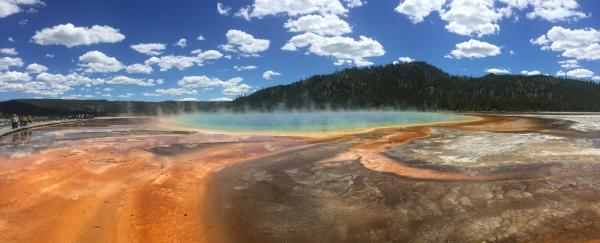 Yellowstone June 2016