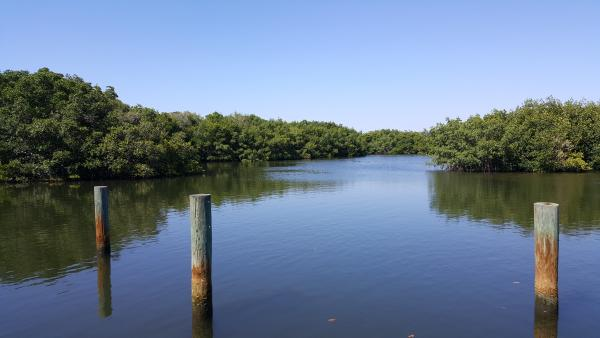The docks at the Madeira Beach KOA on Long Bayou...